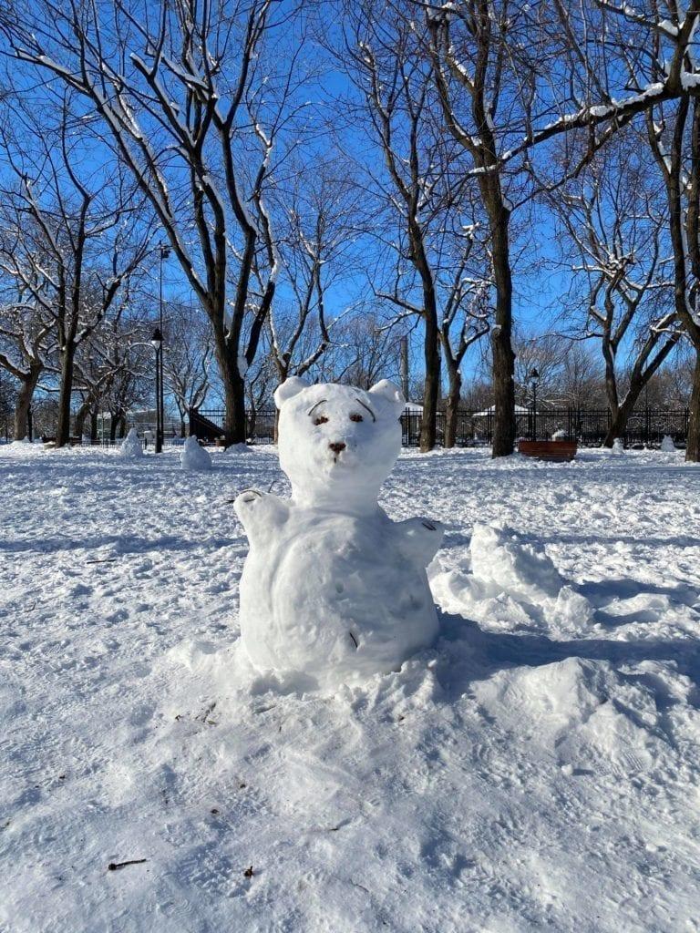 Ourson de neige du Parc Laurier du secteur du Plateau Mont-Royal