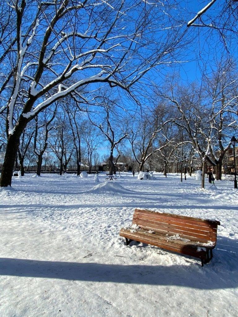 Parc enneigé du Petit Laurier dans le Plateau Mont-Royal