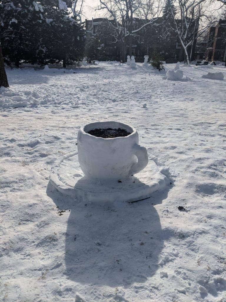 Une tasse de café de neige du Parc Molson du secteur de Rosemont-La Petite-Patrie