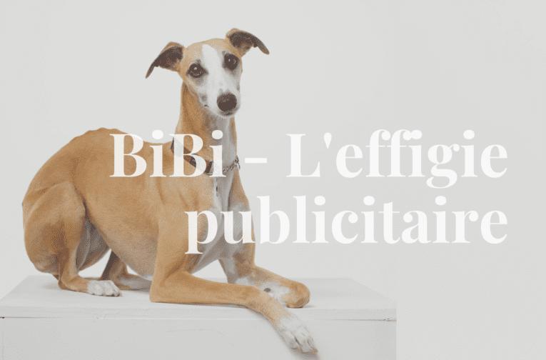 BiBi - Chien immobilier
