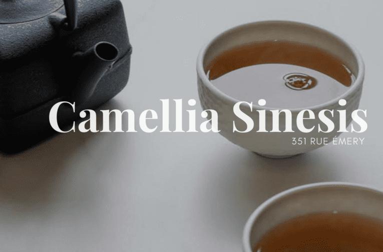 Camellia Sinesis - Rosemont-La Petite-Patrie